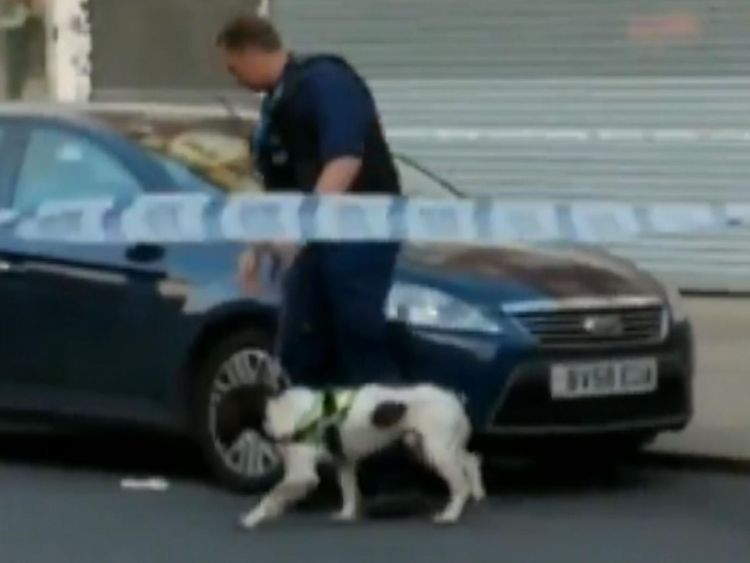 A police sniffer dog investigates a car near Southgate tube station. Credit: Hasan Hadi / Soughgate Solicitors