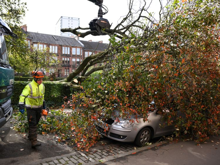 Motorists have been warned of travel misery due to fallen trees